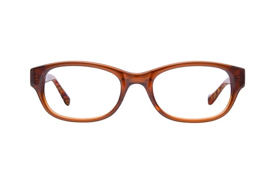 Lucky Busy Bee Brown Glasses