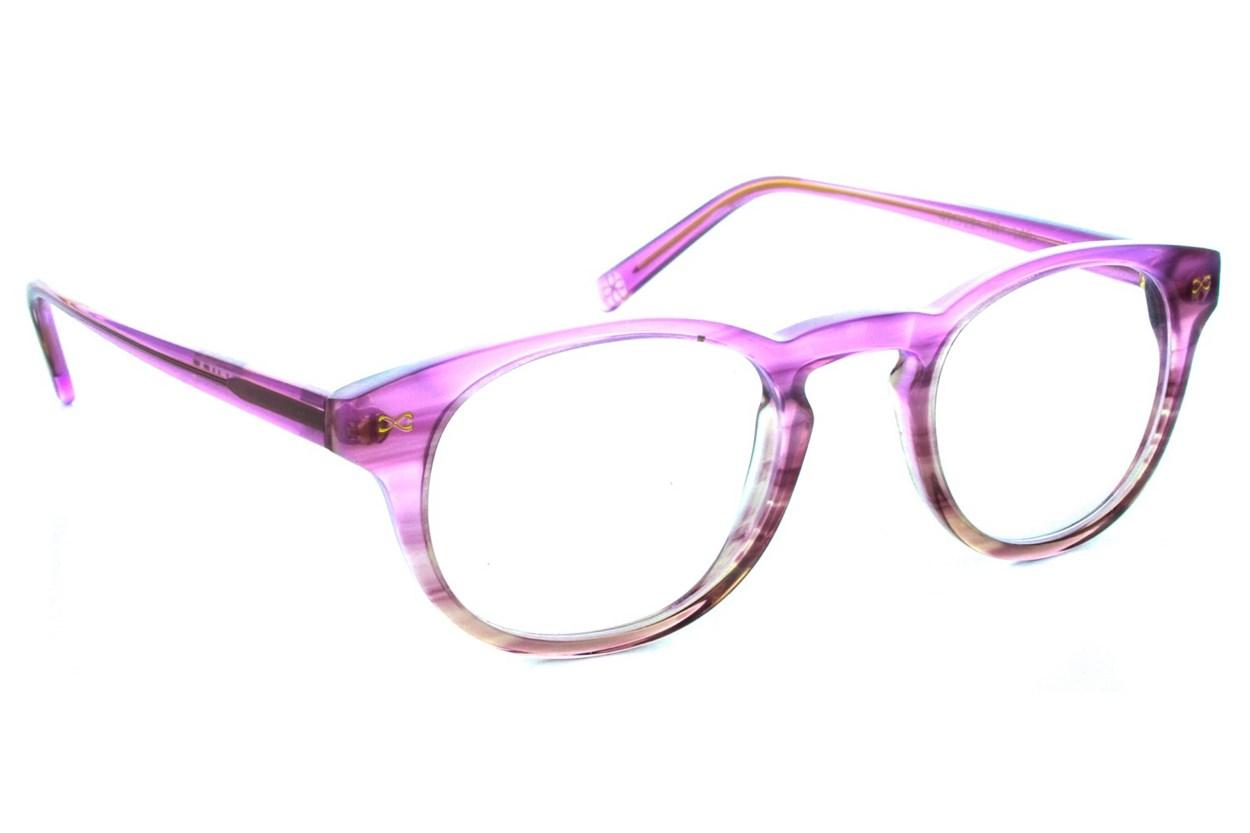 Velvet Eyewear Ilene Tortoise Glasses