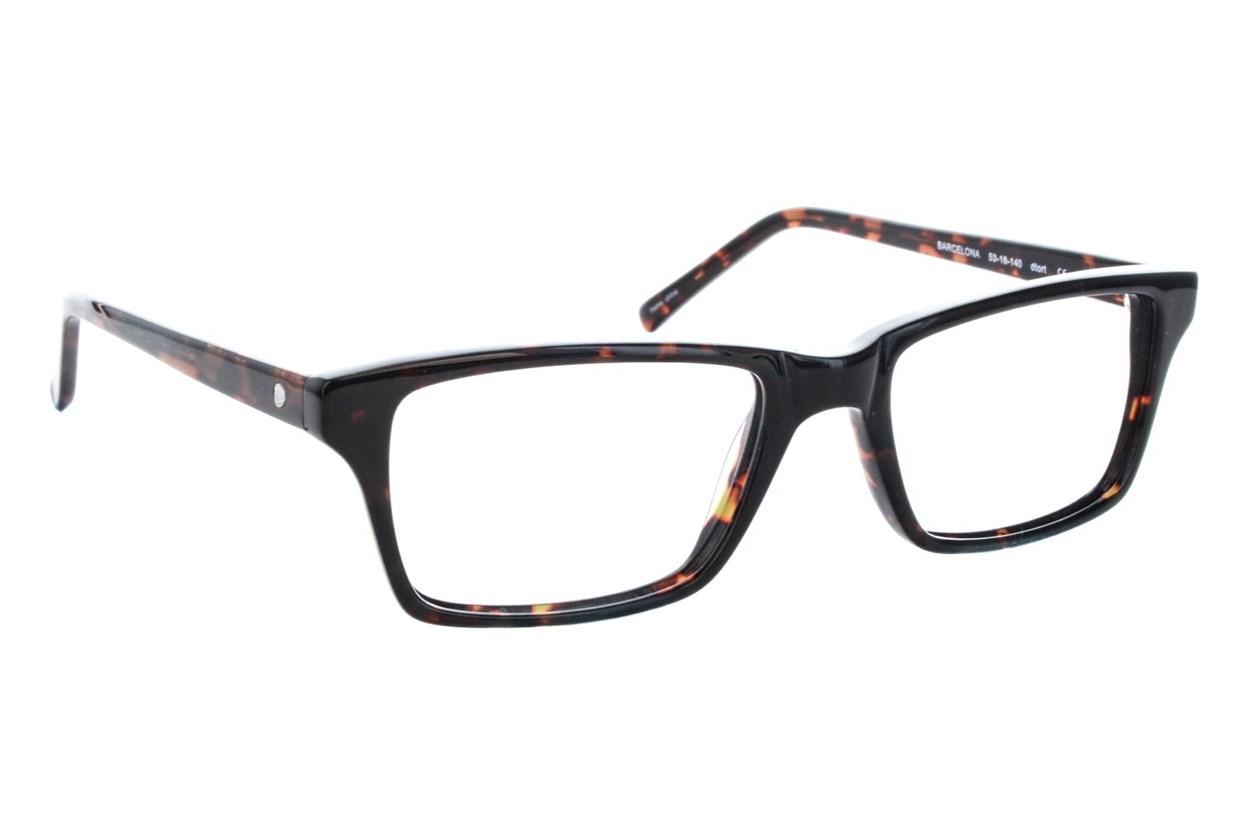 Eco Barcelona Tortoise Glasses