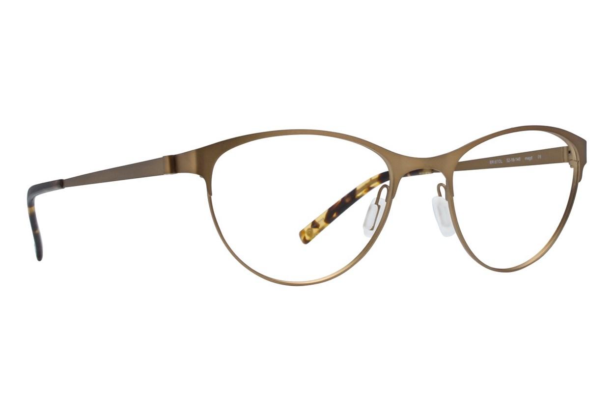 Eco Bristol Gold Glasses