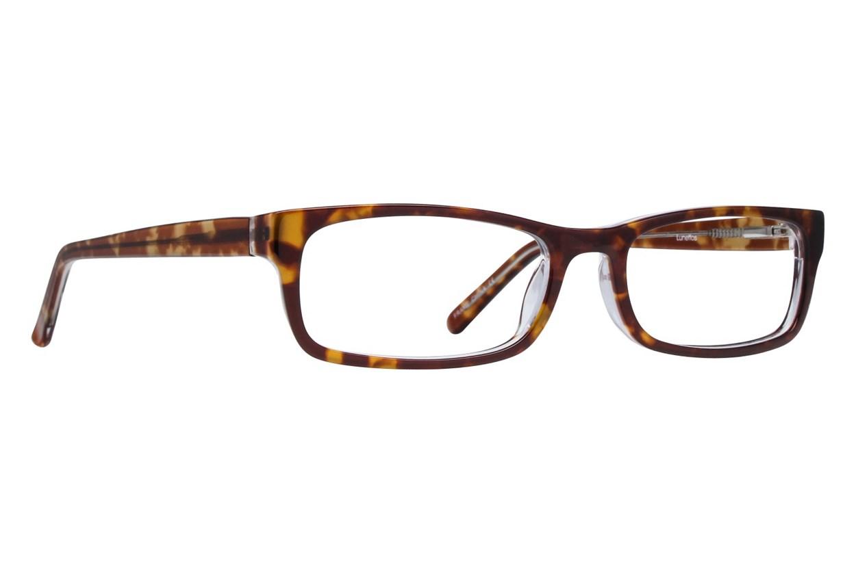 Lunettos Abraham Tortoise Glasses