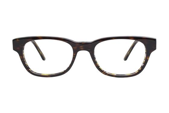 Vanni V1912 Brown Glasses