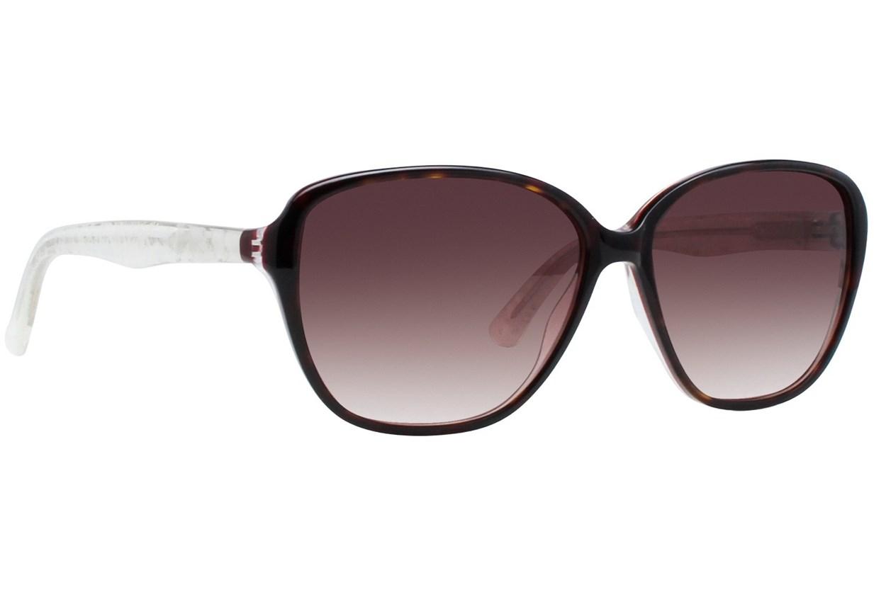 Vera Wang V411 Tortoise Sunglasses