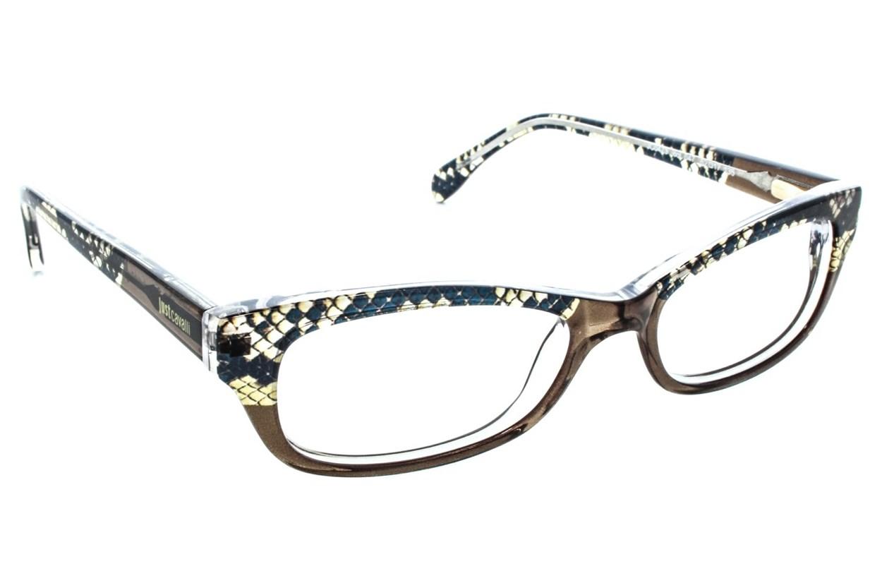 Just Cavalli JC0473 Brown Glasses