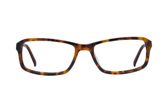 Fatheadz Balance Tortoise Glasses
