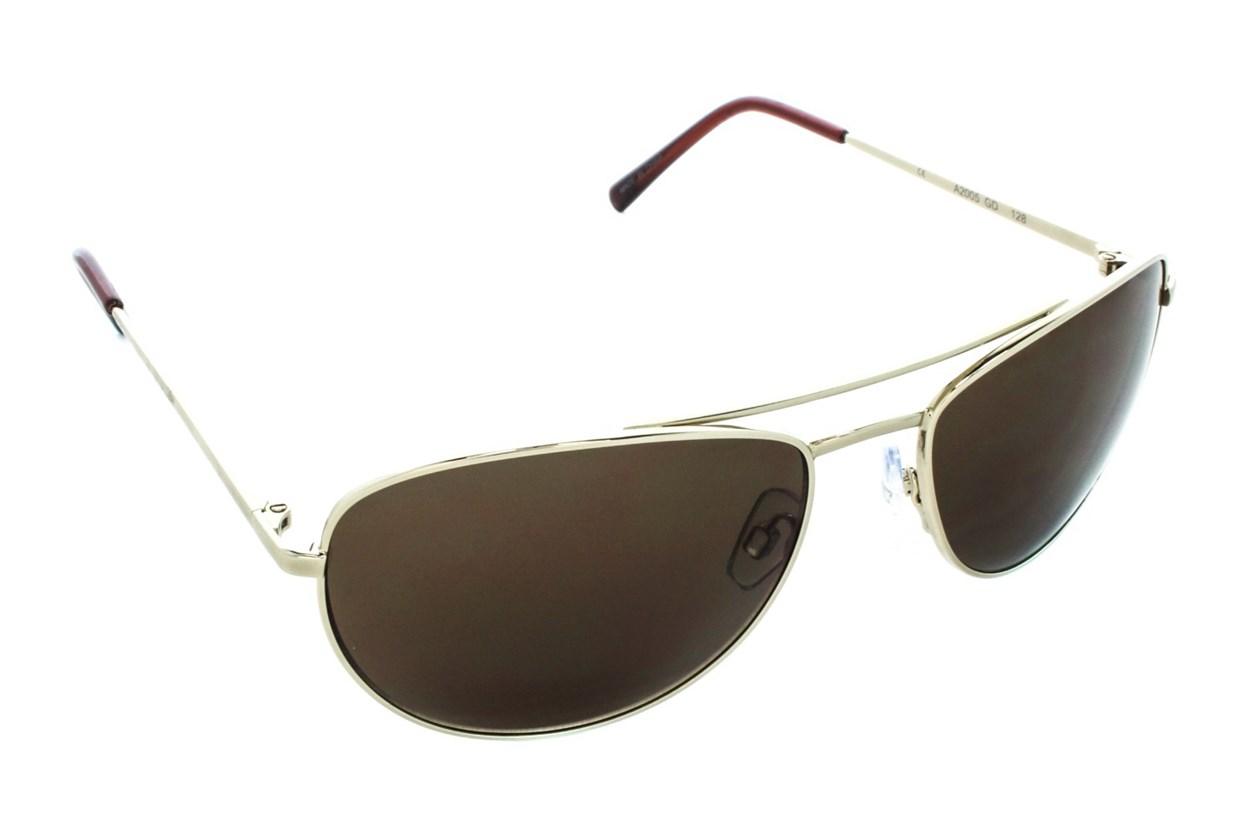 DNA 2005 Gold Sunglasses