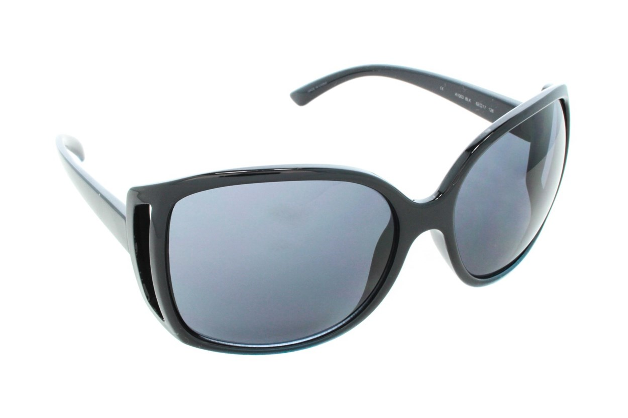 DNA 1003 Sunglasses - Black