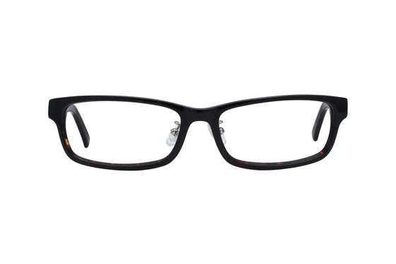 Red Tiger 501z Tortoise Glasses