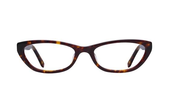 Lunettos Emily Tortoise Glasses