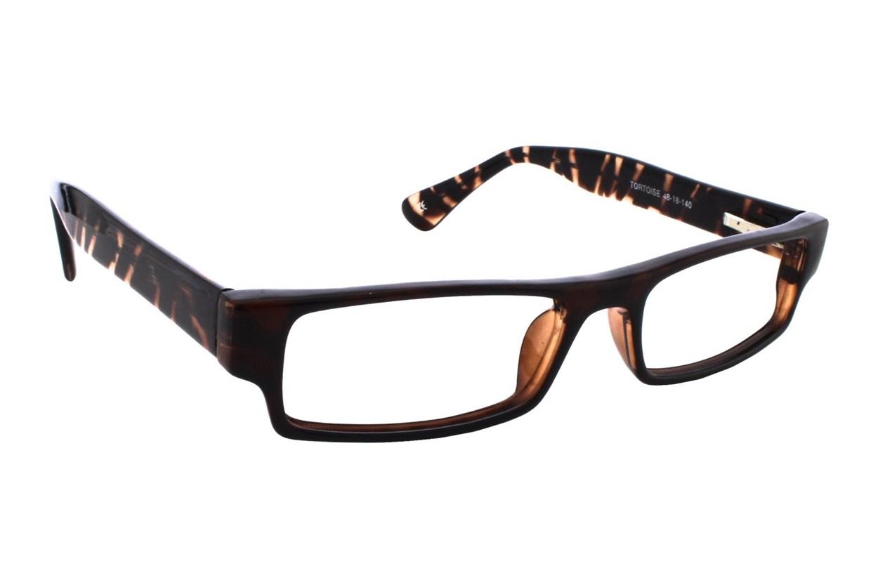 Lunettos Phillip Tortoise Glasses
