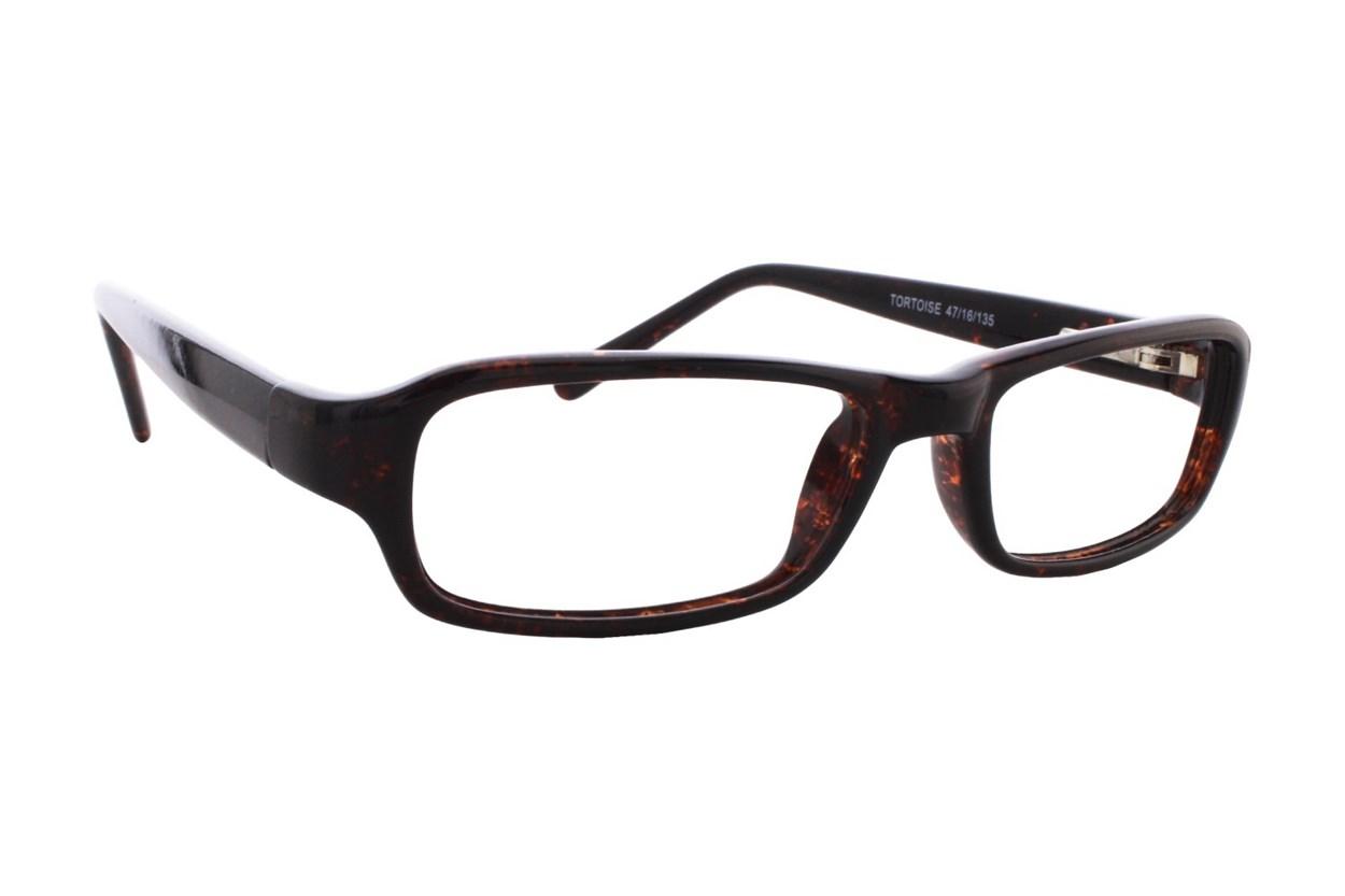 Lunettos Samuel Tortoise Glasses