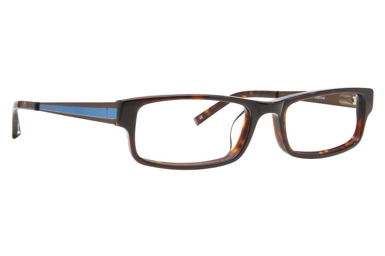 Converse Q018 Tortoise Glasses
