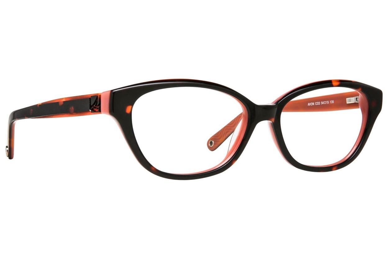 Sperry Top-Sider Avon Tortoise Glasses