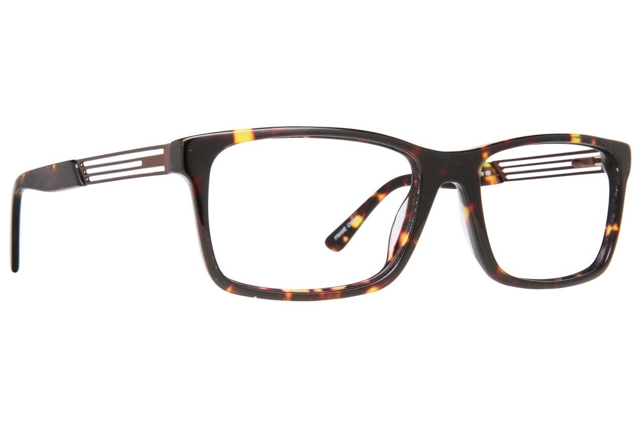 Maxx Eyewear Vegas Tortoise Glasses