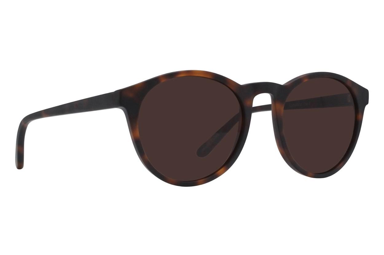Lunettos Casey Tortoise Sunglasses
