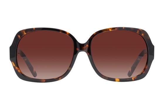 Lunettos Jean Tortoise Sunglasses