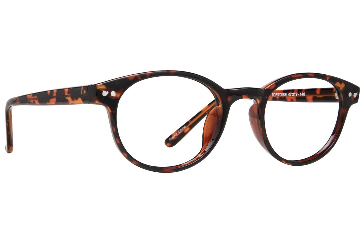 Affordable Designs Yale Tortoise Glasses