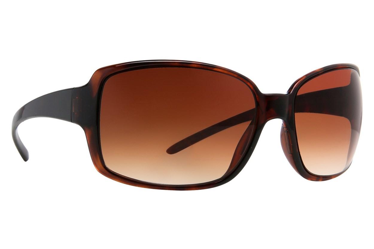 DNA 1005 Tortoise Sunglasses