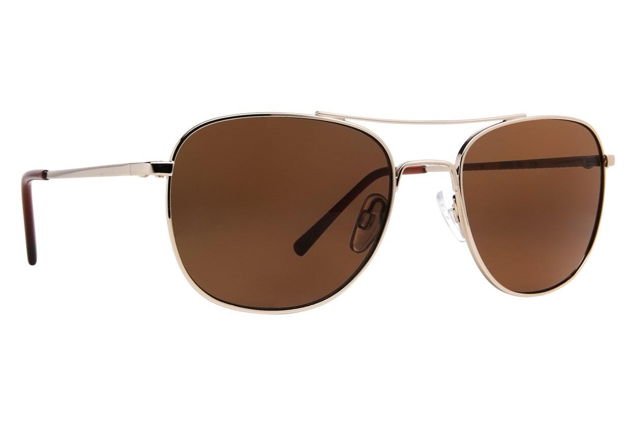 DNA 2006 Gold Sunglasses