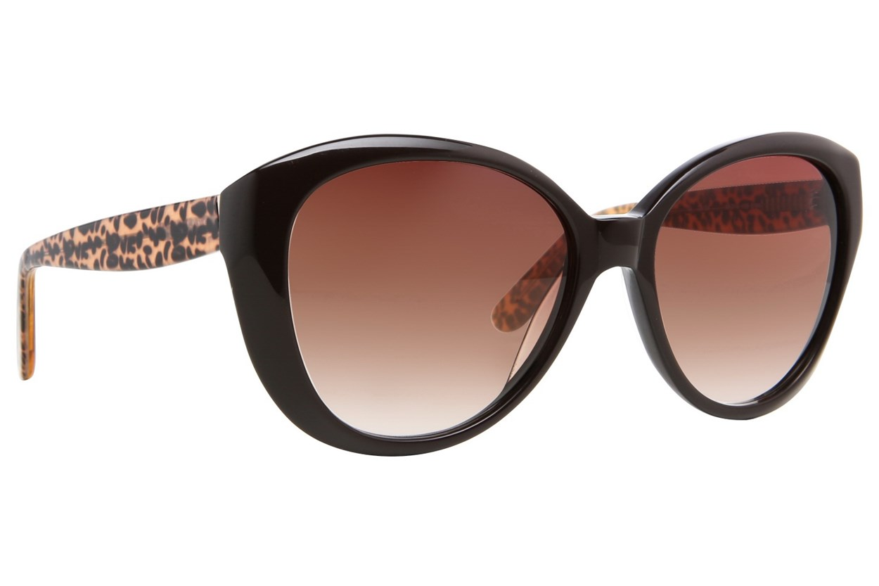 Moda 104 Sunglasses - Brown