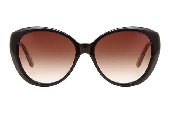Moda 104 Brown Sunglasses