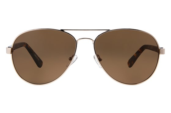 Moda 110 Gold Sunglasses