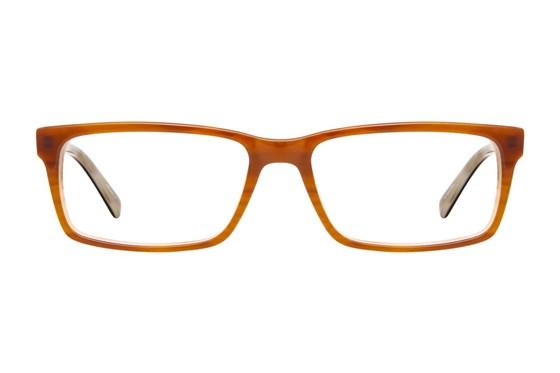 Viva 309 Brown Glasses