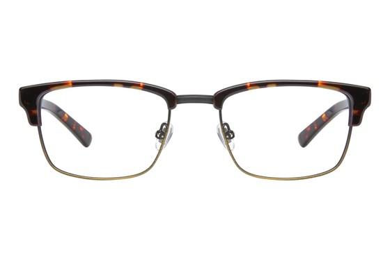 Superdry Buddy Tortoise Glasses