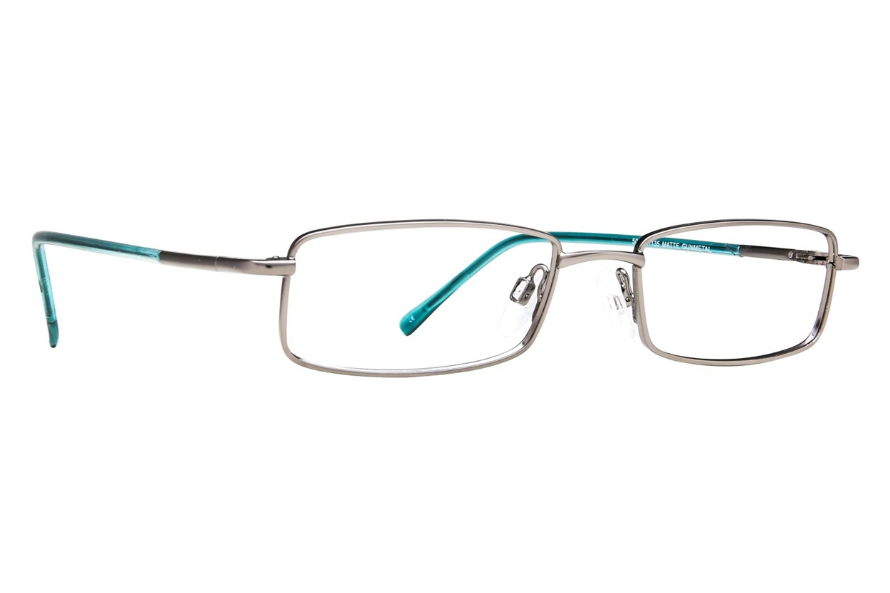 Arlington AR1009 Gray Glasses