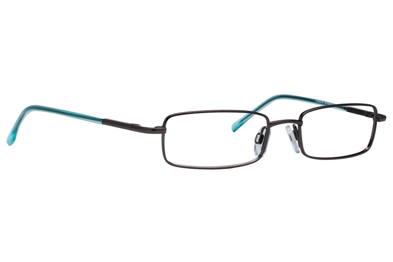 Arlington AR1009 Gray Glasses