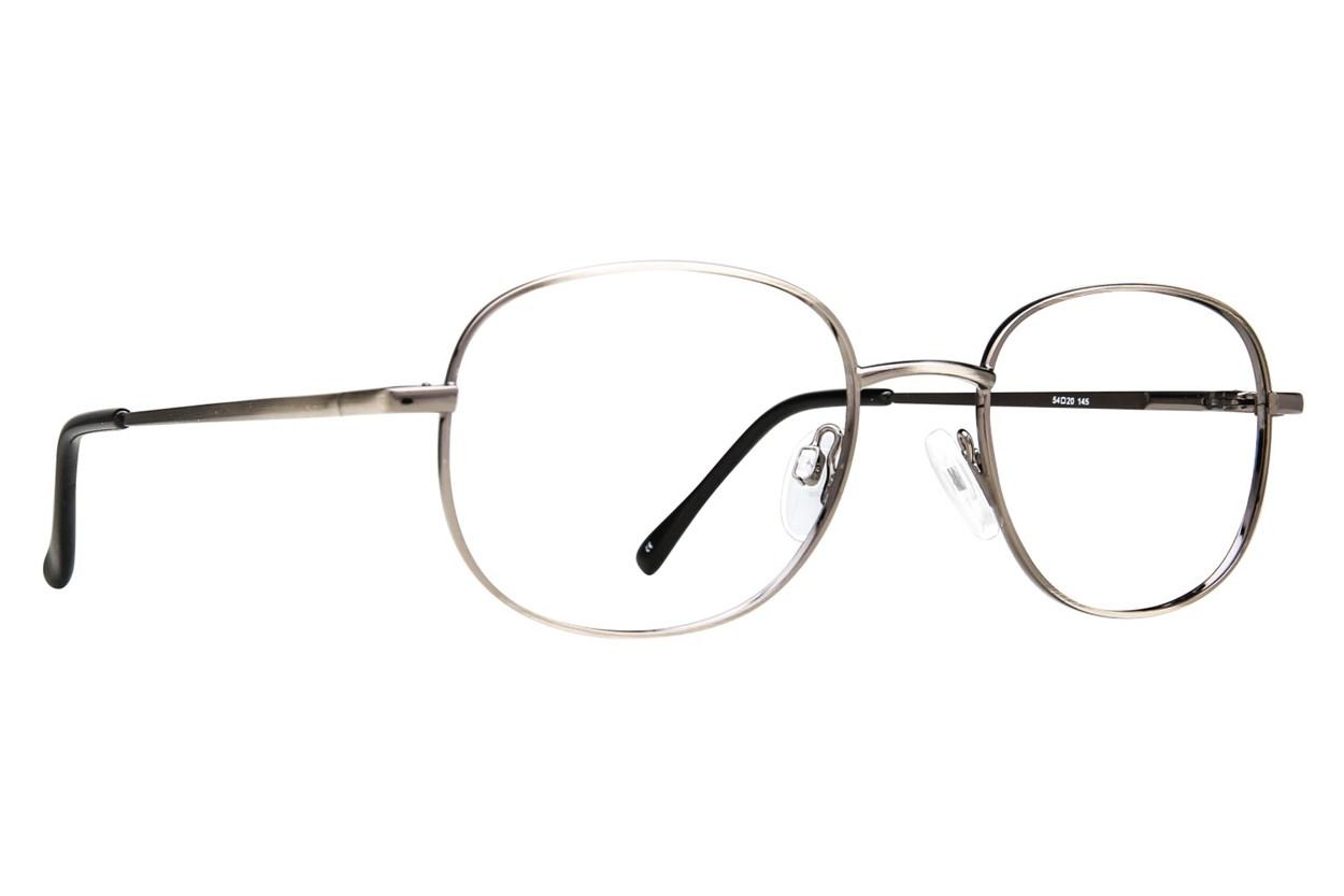 Arlington AR1011 Silver Glasses