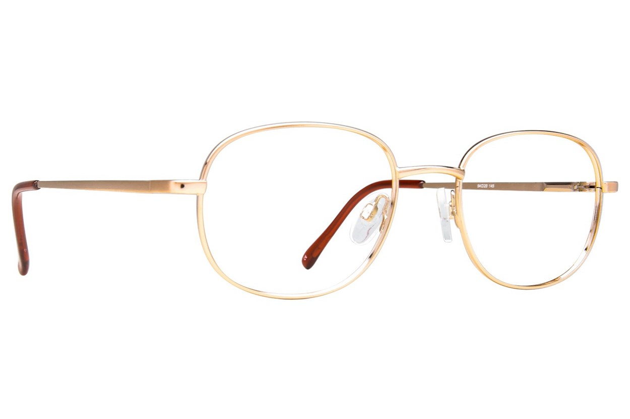 Arlington AR1011 Gold Glasses