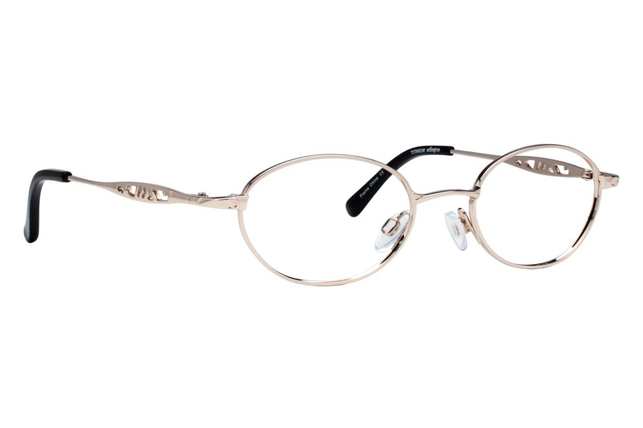 Arlington AR1014 Gold Glasses
