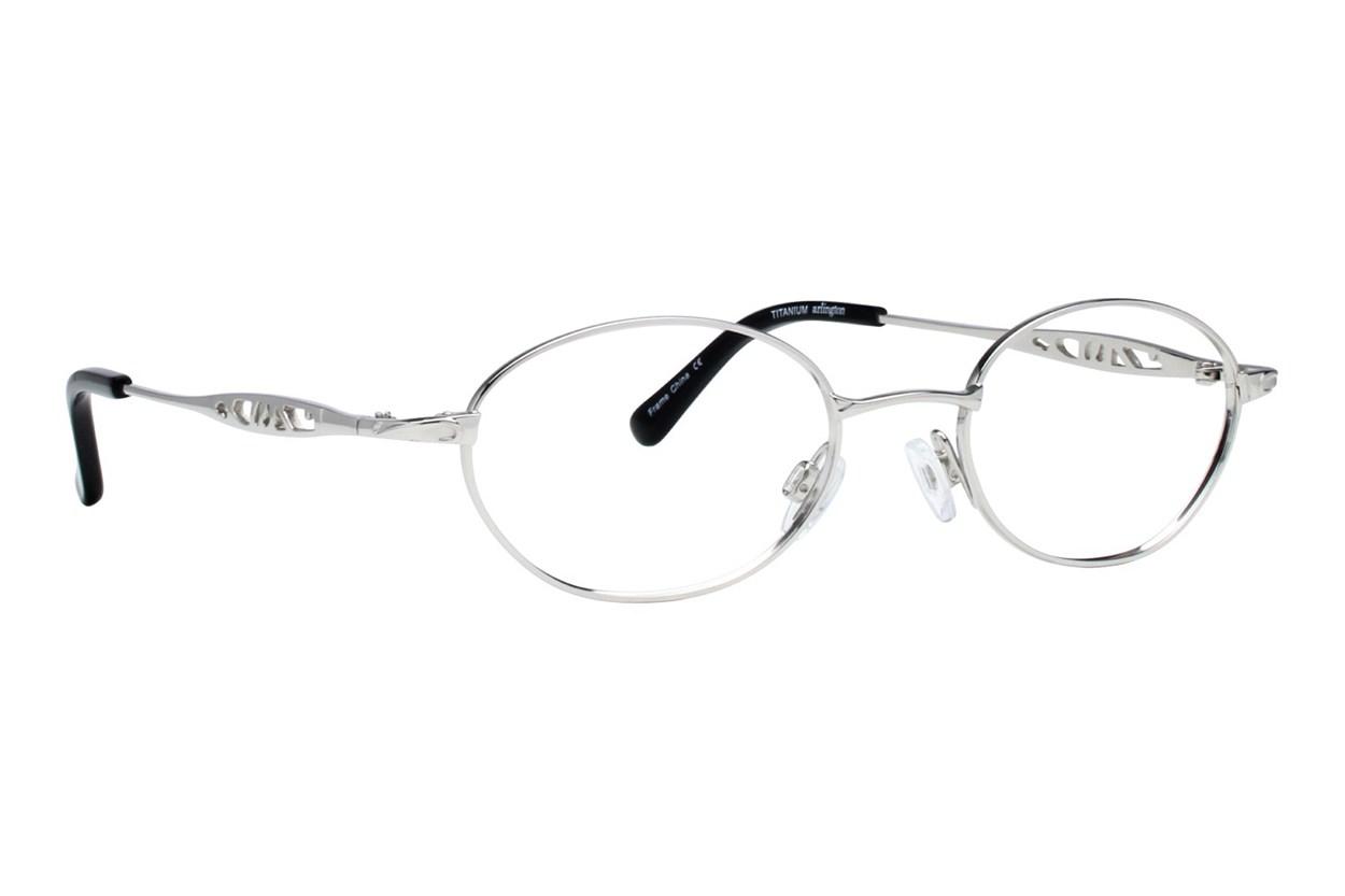 Arlington AR1014 Silver Glasses