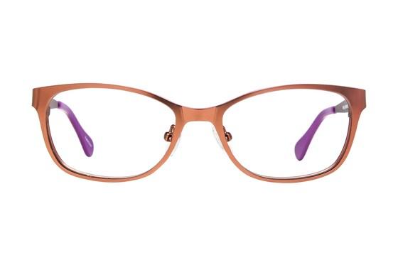 Picklez Fluffy Brown Glasses