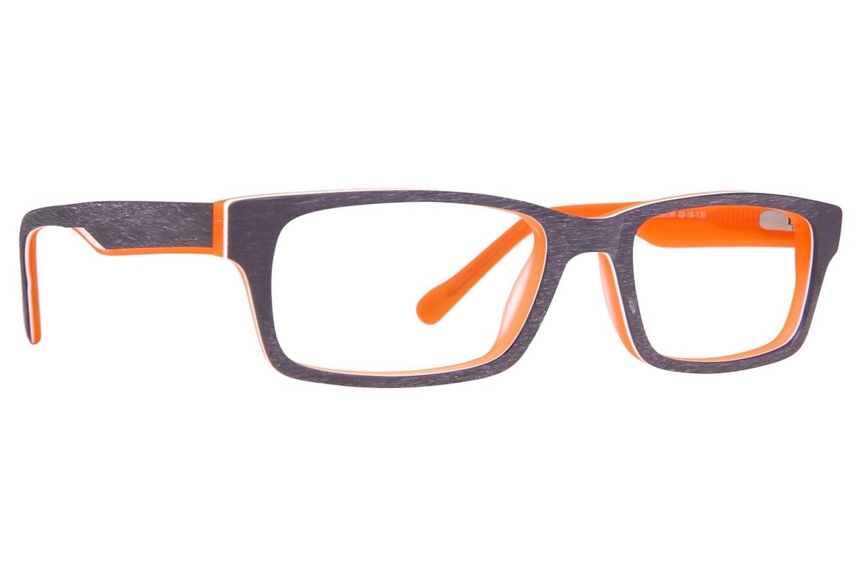 Picklez Max Brown Glasses
