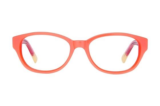 Picklez Buddy Orange Glasses