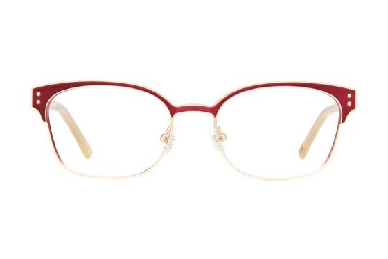 Ted Baker B237 Gold Glasses