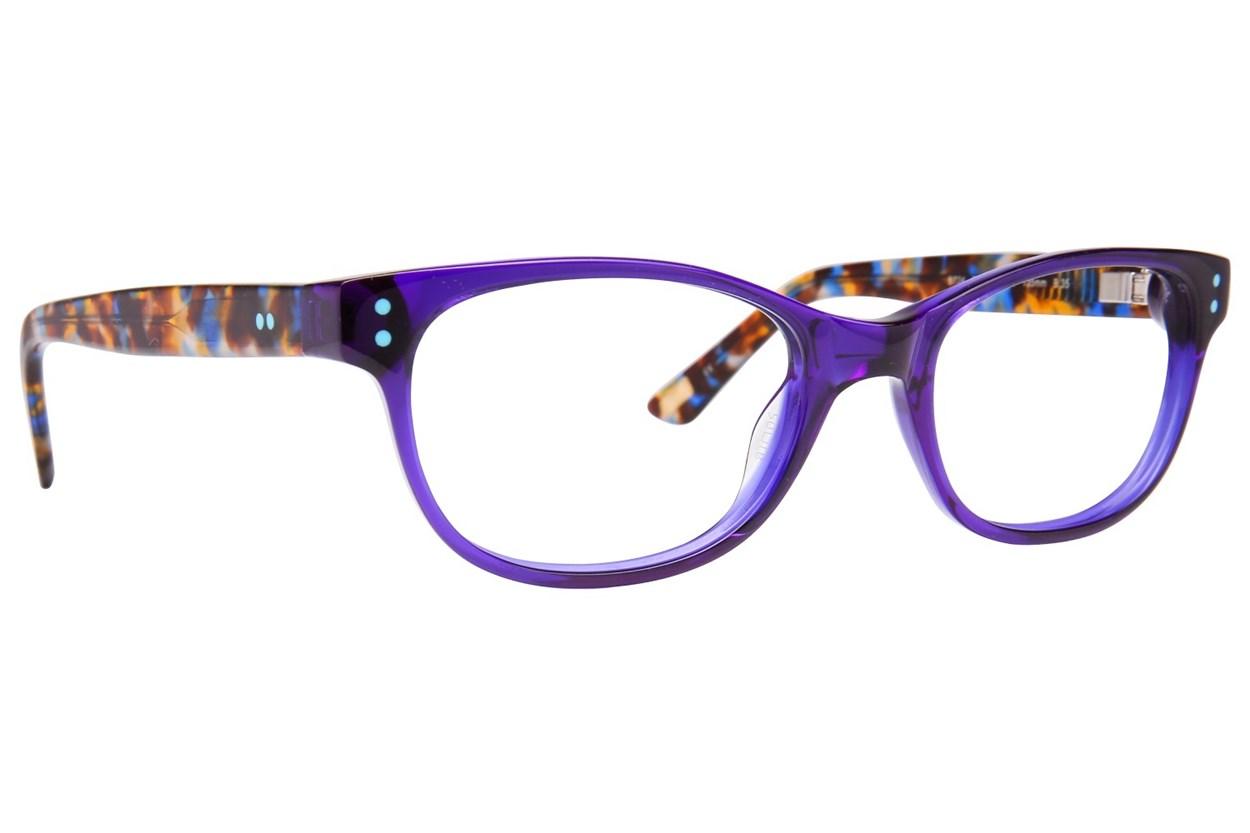 Ted Baker B724 Blue Glasses