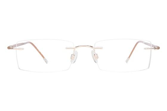 Invincilites Sigma T Tan Glasses