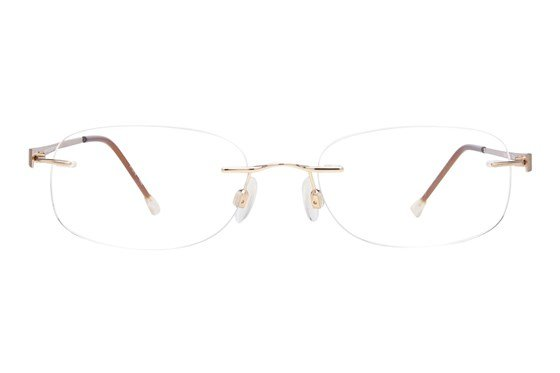 Invincilites Zeta R Gold Glasses