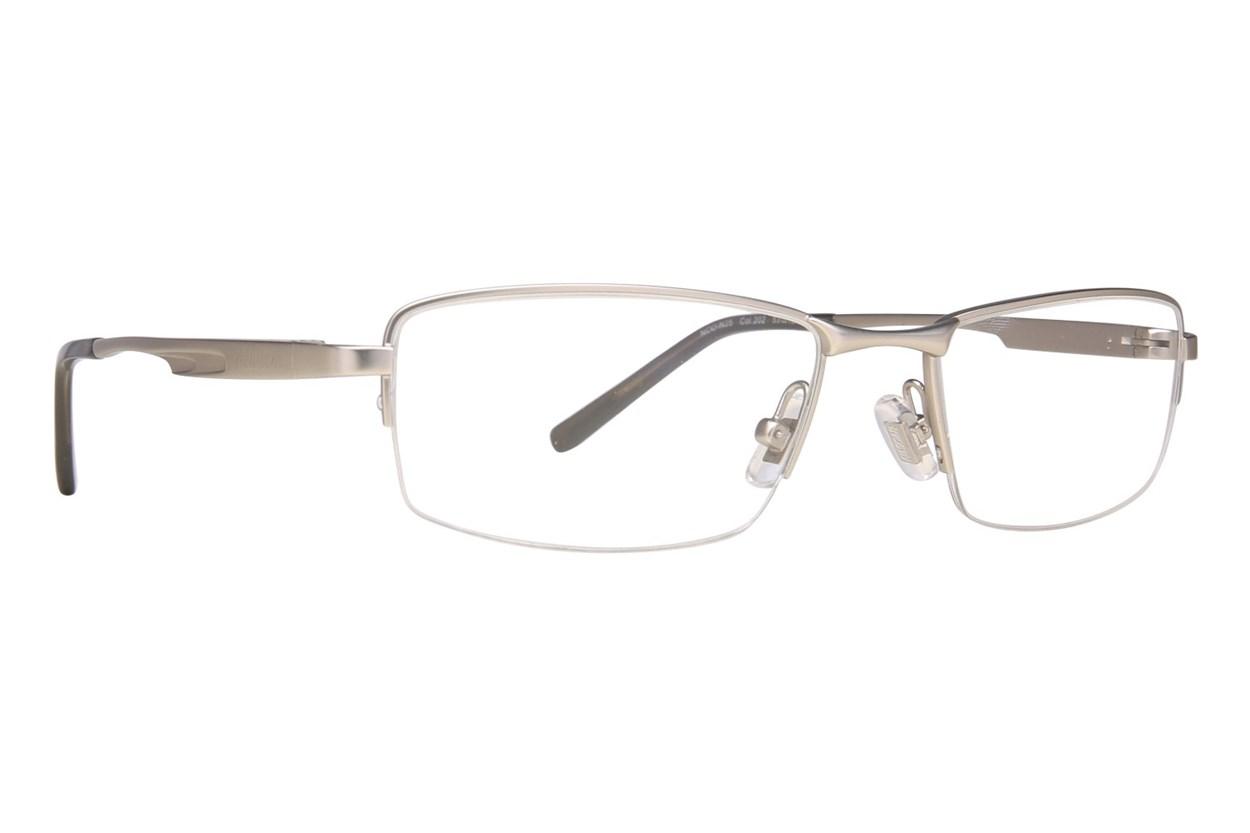 NASCAR N25 Silver Glasses