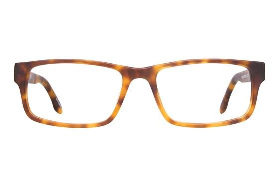 O'Neill Ryder Tortoise Glasses