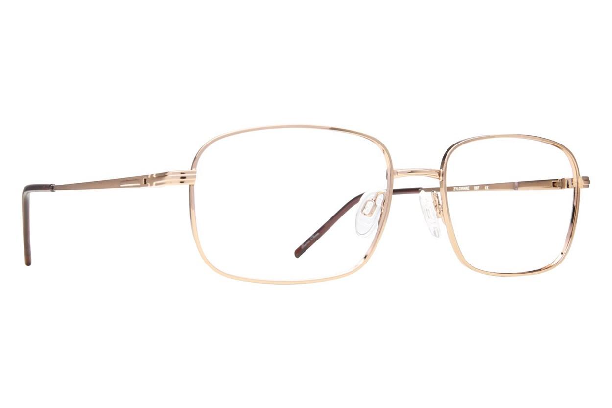 Stetson ST F112 Tan Glasses