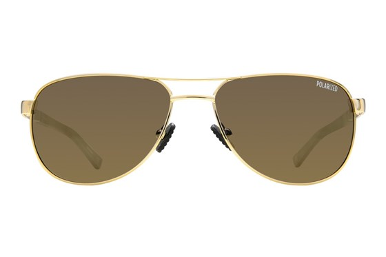 Champion 6004 Gold Sunglasses