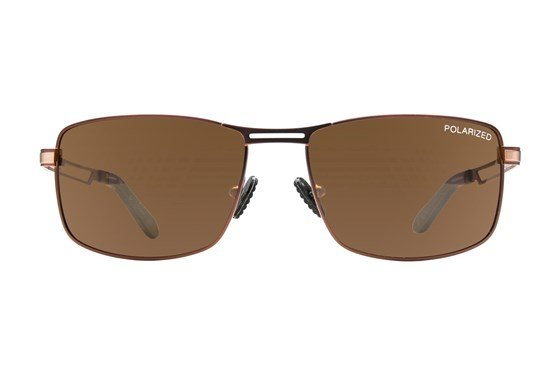 Champion 6029 Brown Sunglasses