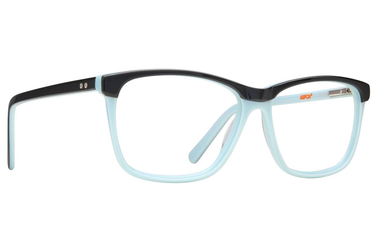 Paws n Claws B 907 Black Glasses