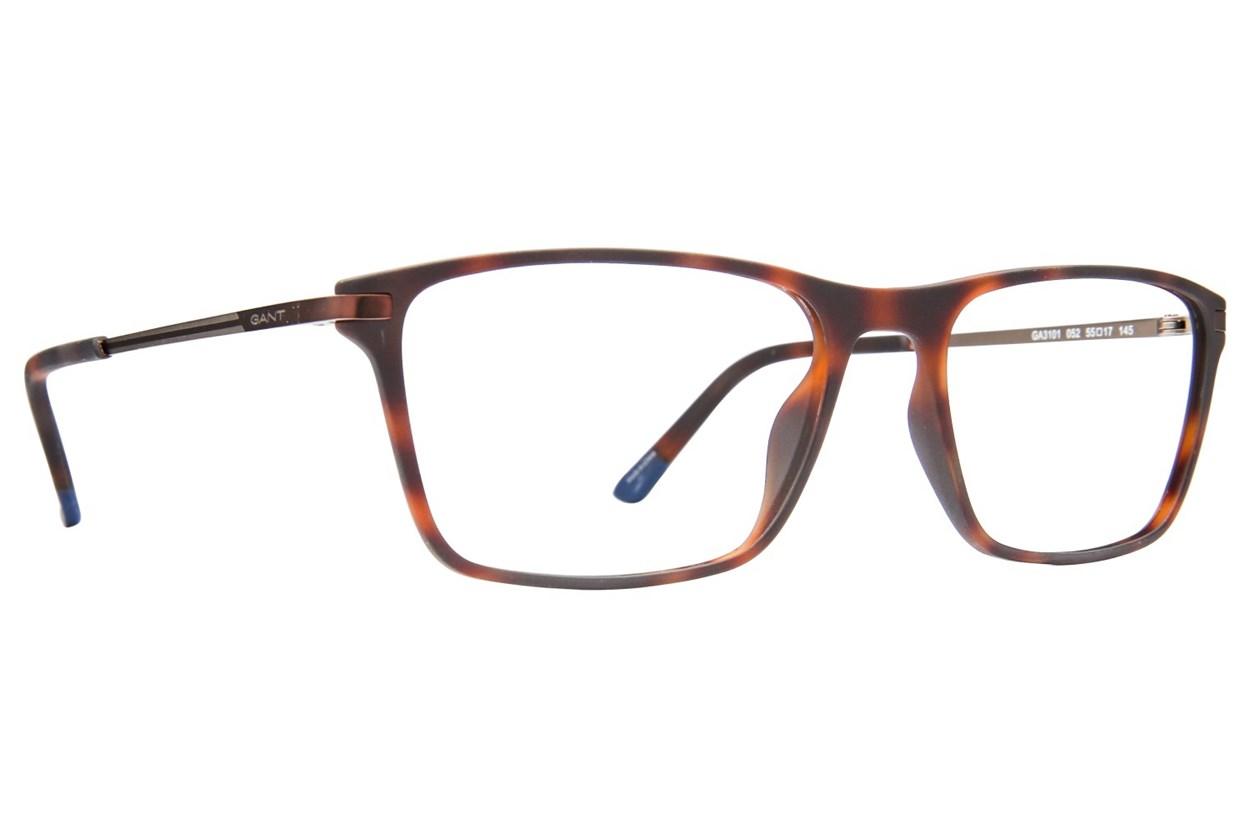 Gant GA3101 Tortoise Glasses
