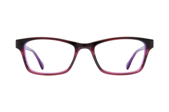 Bloom Optics Petite Sarah Tortoise Glasses