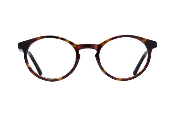 Lunettos Charlie Tortoise Glasses